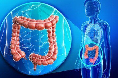 Sağlığa zarar vermeden vücudun sıvılarını nasıl çıkarabilirim