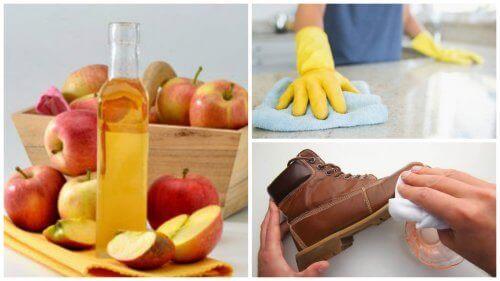 Elma Sirkesi İçin Evde 7 Kullanım Yeri