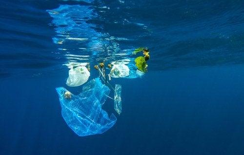 okyanustaki plastikler