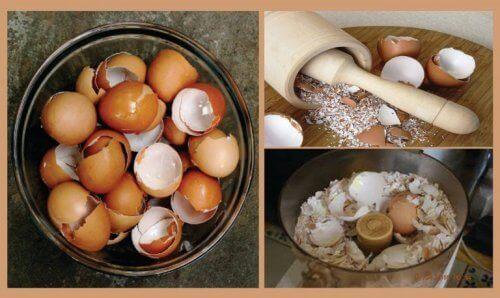 Yumurta Kabukları ile Yapabileceğiniz 6 İlginç Uyguluma