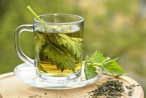 ısırganotu çayı