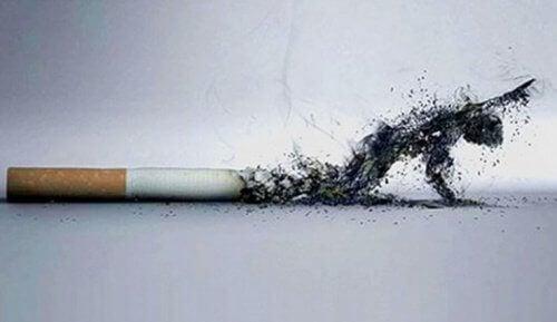Sigarayı Bırakmak Dış Görünüşünüzde Neleri Değiştirir?