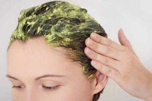 avokadonun kozmetik kullanımı ve saç maskesi