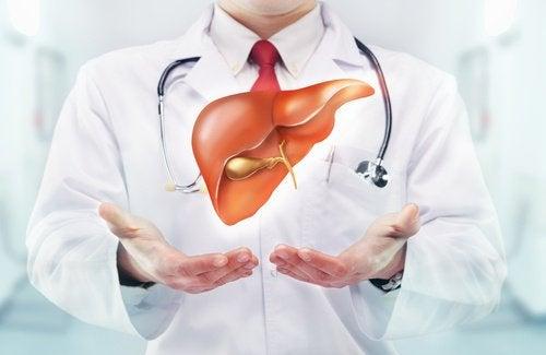 karaciğeri güçlendirmek