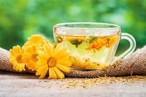 farenjit rahatsızlığı için aynısefa çayı