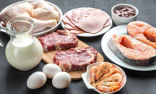 protein kaynağı besinler