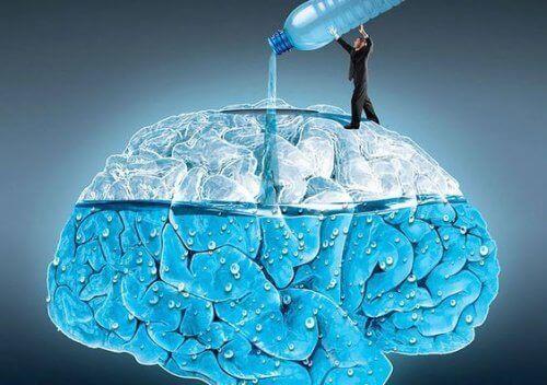 Su İçmek: Beynimize 5 İnanılmaz Etkisi