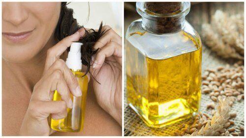 Buğday Özü Yağının Saçınızı Desteklemesinin 6 Yolu