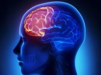 hormon dengesizliği bilişsel sorunlara neden olabilir