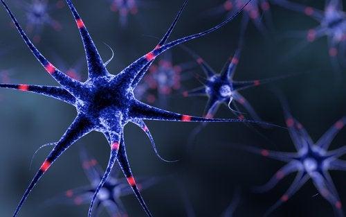 Sinir Sistemini Güçlendirmek İçin Yapabileceğiniz 6 Şey