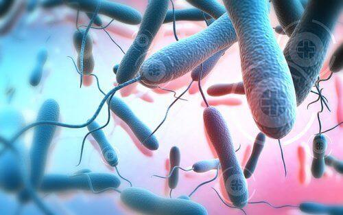 mikroskobik toksinler