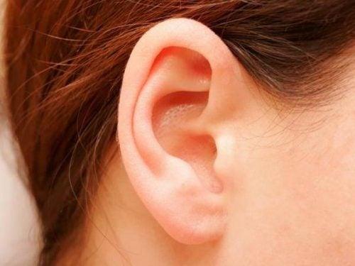 kulaklarınız önemli bilgiler verir