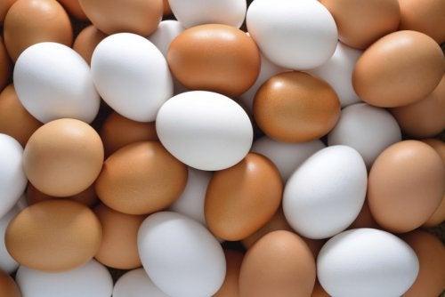 beyaz ve kahverengi yumurta