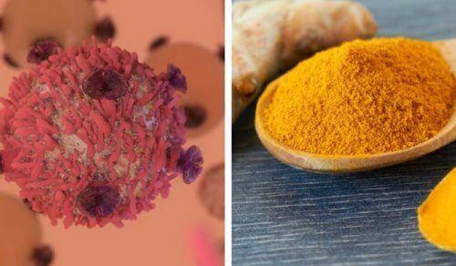 Zerdeçalın Kanserle Nasıl Savaştığını Öğrenin
