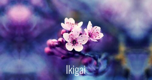 Kişisel Gelişim İçin Japonca 7 Güzel Söz