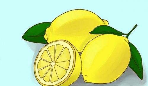 Tarçın ve Limon Reçetesi: Heyecan Verici Bir Keşif