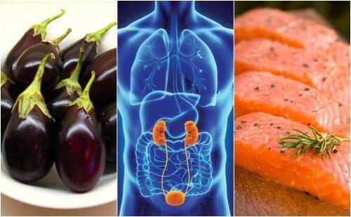 Böbrek Sağlığı Doğal Yollarla Nasıl Artırılır