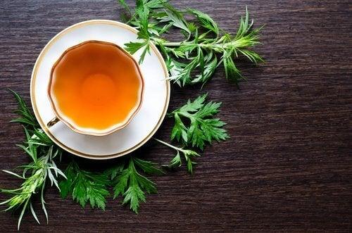 pelin otu çayı