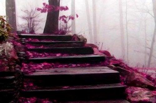 pembe çiçekli tahta merdivenler