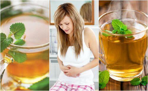 Hassas Bağırsak Sendromu İçin En İyi 5 Çay