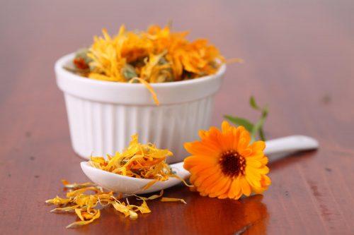 kasede kadife çiçeği