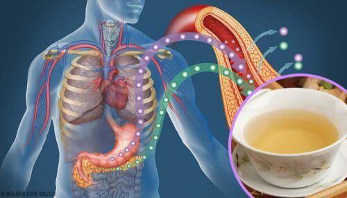Kan Şekeri Seviyenizi Düşürmek İçin 4 Çay