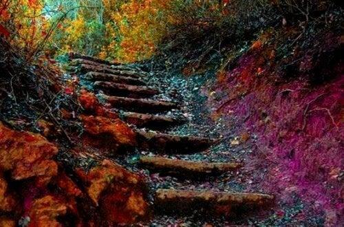 Yaşamın Merdiveni: Her Gün 5 Adımda Kendinizi Nasıl Geliştirirsiniz?
