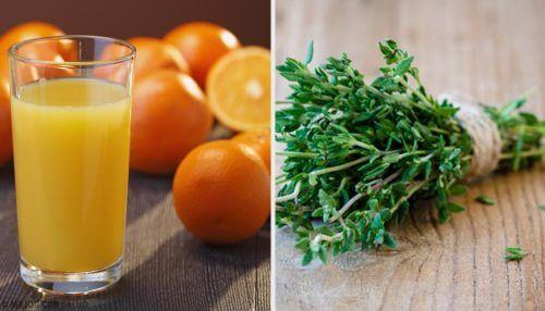 Bilmediğiniz 6 Doğal Antibiyotik Tarifi