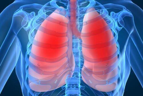 Akciğer Sağlığı: 10 Tehlike İşareti