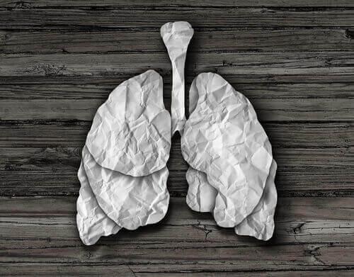 kağıttan sönmüş akciğer