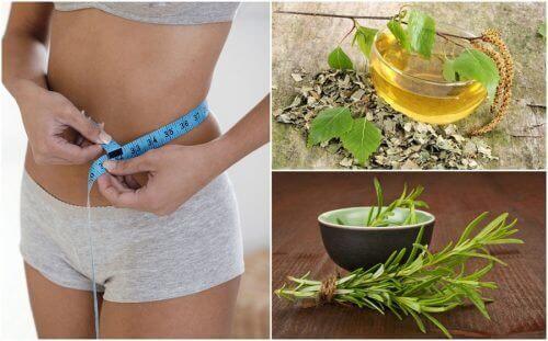 Kilo Vermenize Yardımcı Olacak 8 Sağlıklı Bitki