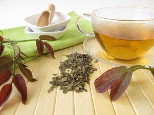 ceviz ağacı kabuğu ile çay