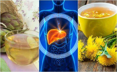 Yağlı Karaciğer ile Mücadele için 5 Bitkisel ve Doğal Çözüm