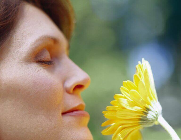 bitki ve çiçek koklamak