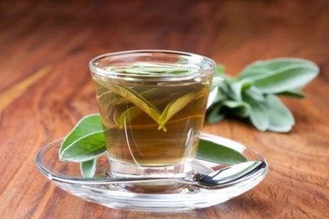 varisli damarlar için ada çayı