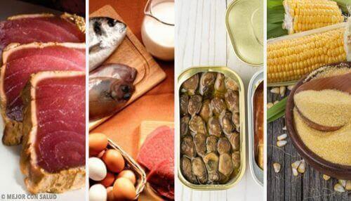 Yüksek Miktarda Toksin İçeren Gıdalar