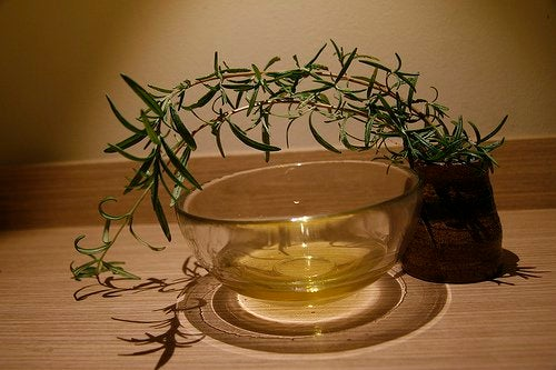 esansiyel çay ağacı yağı