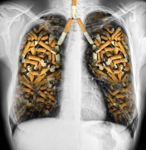 sigara izmaritleri dolmuş ciğerler