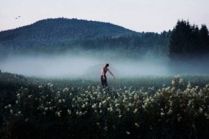 sisli pamuk tarlasında özgür adam
