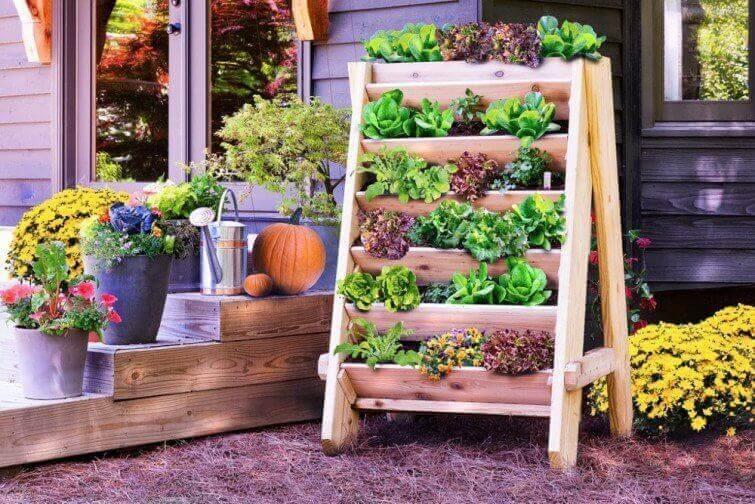 dikey bahçe evinizde yer açmak için iyi bir fikir