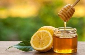 bal ve limon