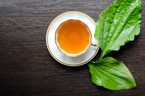 yüzünüzdeki lekeler için plantain çayı