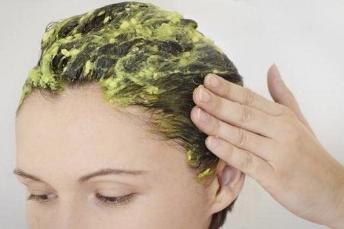 avokado ve saç sağlığı