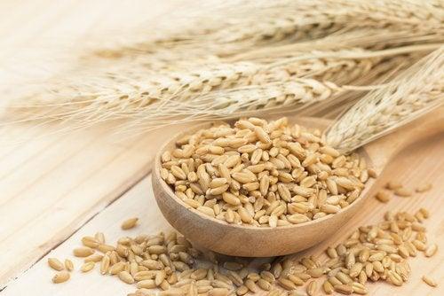 bir kaşık tahıl