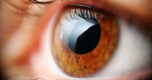 Gözler ve Vücudumuz Hakkında Söyleyebileceği 5 Şey