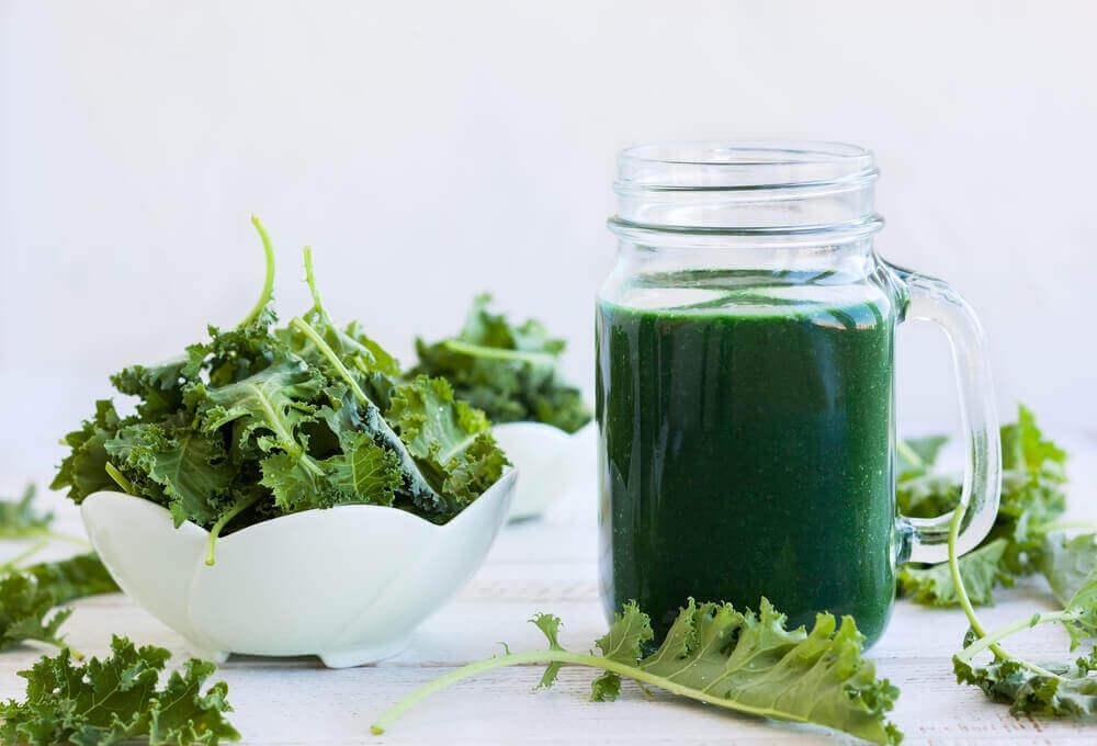 source de chlorophylle