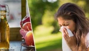 alerjiler için ev yapımı tedaviler