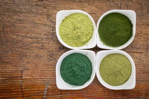 dört çeşit yeşil toz