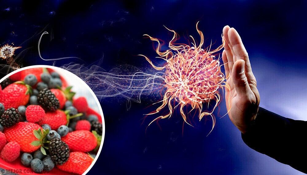 Bağışıklık Sistemini Güçlendirmek İçin 9 Yiyecek