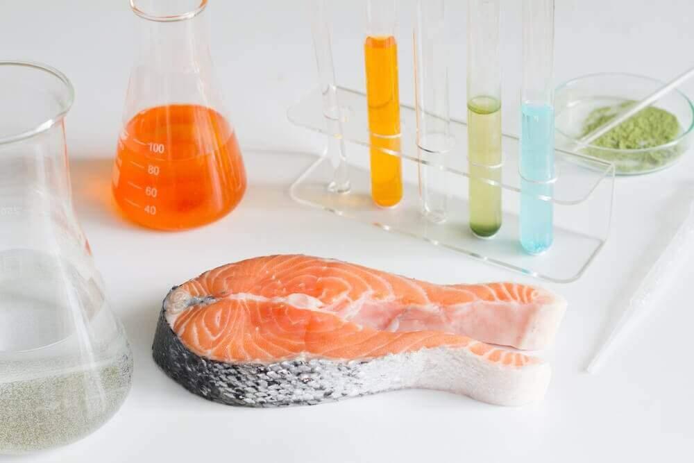 Asla Yememeniz Gereken 6 Riskli Balık Türü
